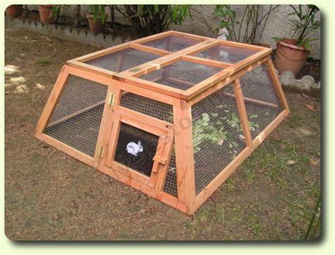 enclos exterieur pour tortue les enclos les tortues terrestres vivelestortues