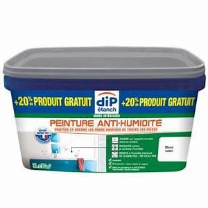 Peinture Pour Mur Humide : peinture anti humidit blanc 2 5l 20 castorama ~ Dailycaller-alerts.com Idées de Décoration