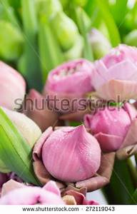 Close Bunch Colorful Tulips Spring Mothers Stock Photo ...