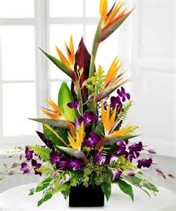 tropical splendor birds of paradise and orchid bouquet