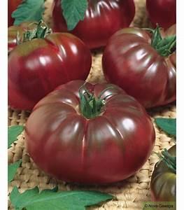 Tomate Noir De Crimée : graines a semer de tomate noire de crimee ~ Dailycaller-alerts.com Idées de Décoration