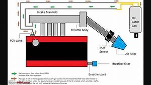 Oil Catch Can Installation Diagram