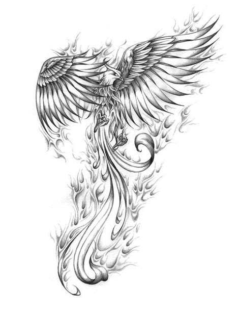 Best 25+ Phoenix Tattoo Design Ideas On Pinterest