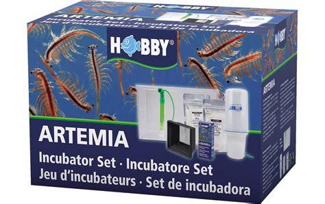 artemia aufzucht set hobby incubator set in artemia aufzucht