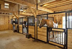 21 best percheron images on pinterest With best wood for horse stalls