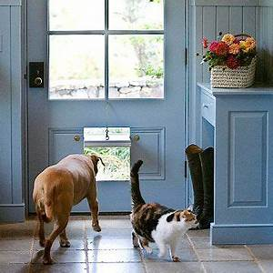 17 best images about pet friendly homes on pinterest With airtight dog door