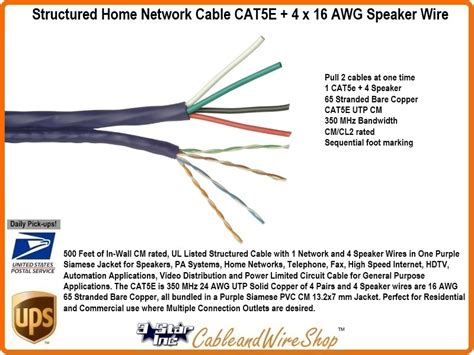 Cat 5 Wiring For Speaker by Bundled Cable Network Wiring 1 Cat5e 4 Speaker Wire 500 Ft