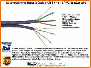 Structured Home Network Cable Cat5e   4 X 16 Awg Speaker