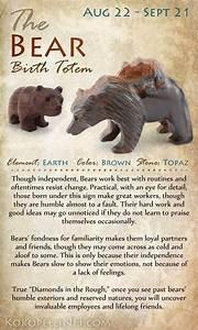 Bear Birth Totem | Paranormal & Spiritual | Pinterest ...