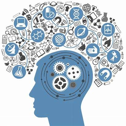 Brain Thinking Transparent Clipart Library