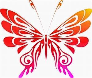 Color Butterfly Free Stock Photo - Public Domain Pictures