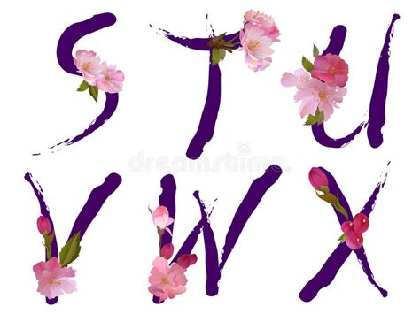 vector alphabet with gentle flowers letters alphabet with flowers letters s t u v w x stock 15369