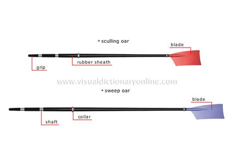 Sculling Oar Boat by Sports Aquatic And Nautical Sports Rowing