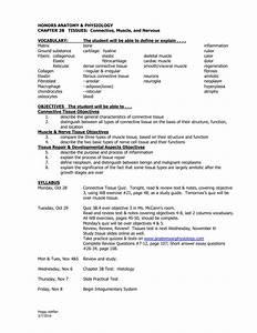 Honors Anatomy  U0026 Physiology