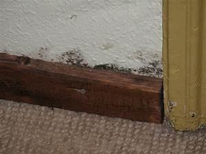 Nasse Wände Im Haus : nasse wand in pinneberg nbg ~ Lizthompson.info Haus und Dekorationen