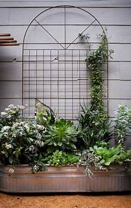 blumenkasten mit rankgitter bepflanzen pflanzen fur den With katzennetz balkon mit mr gardener blumenkasten mit rankgitter