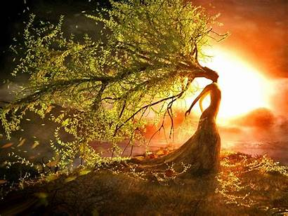 Solstice Summer Wallpapers Woman Shine Soul