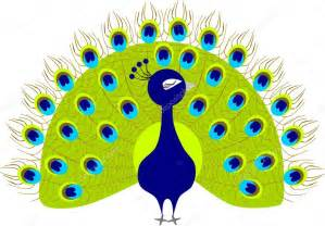 Cartoon Peacock