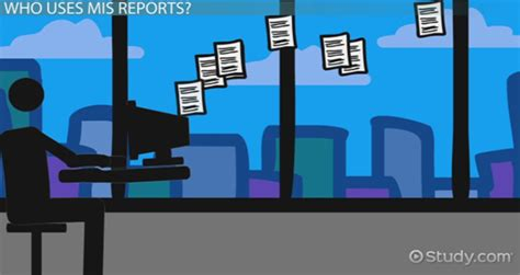 mis reports types meaning exle lesson transcript study