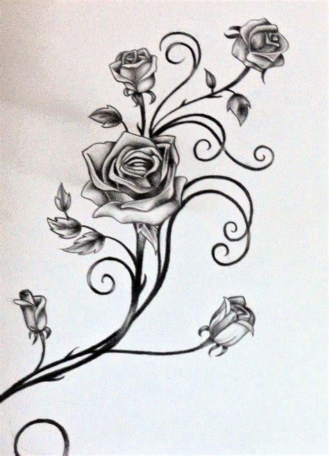 vines and designs pin vines thorns drawing pictures on pinterest