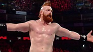 Sheamus Celebrates 8 Years In The WWE (Photo ...