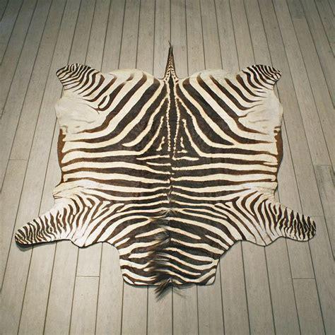 zebra hide rug zebra rug mount 10953 the taxidermy