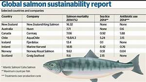 New Zealand leading the way with sustainable salmon ...