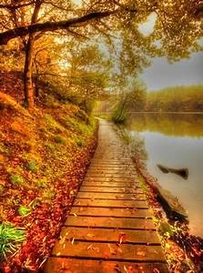 99 amazing pictures of autumn idyll part 1
