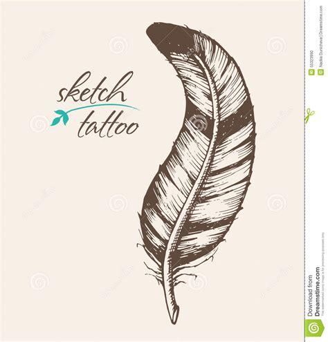 tatouage plume  aigle photo  cochese tattoo