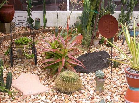 outdoor succulent garden ideas succulent garden design