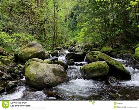 large rocks stones and rapids along a royalty free