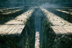 The Maze Runner | Logan Krum Movie Reviews