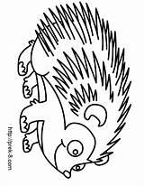 Hedgehog Coloring Porcupine Cartoon Drawing Pages Clipart Drawings Line Animal Wild Clip Tiger Bear Clipartmag Gangsta Panda Monkey Raccoon Getdrawings sketch template