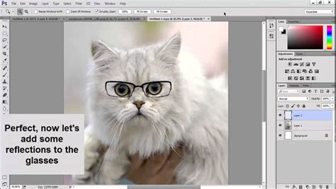 Making A Cat Wear Glasses Photoshop Tutorial Youtube