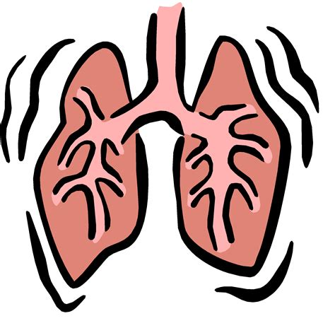 Lungs Clipart Emphysema Of Lungs Clip Cliparts