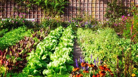 Gemüsegarten Ideen by Gem 252 Sebeet Anlegen 187 Beispiele Ideen Tipps Und Tricks