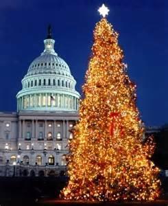 Christmas Tree in America