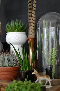 Grünpflanzen Für Innen : wohnblog wohnideen dekoideen einrichtungsideen einrichten wohnen mit ikea dekoration ~ Eleganceandgraceweddings.com Haus und Dekorationen