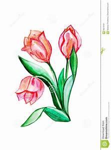 Blumen Bilder Gemalt : blumen gemalt mit aquarellen stock abbildung illustration von sch n graphik 60218161 ~ Orissabook.com Haus und Dekorationen