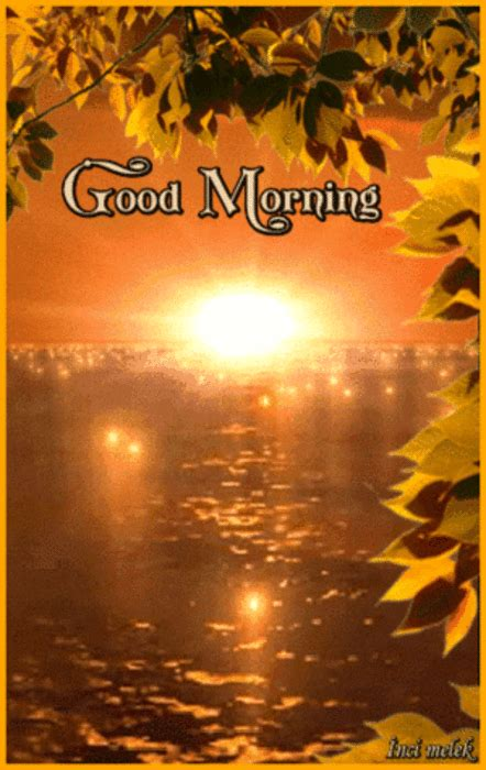 sunrise good morning gif pictures   images