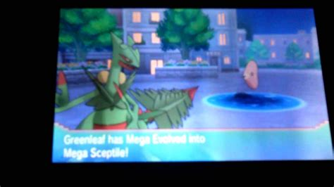 pokemon oras mega sceptile frenzy plant animation youtube