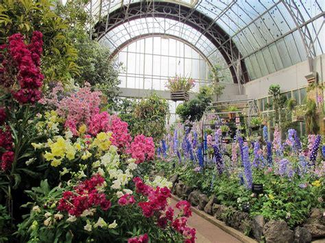 Winter Gardens Runawaykiwi