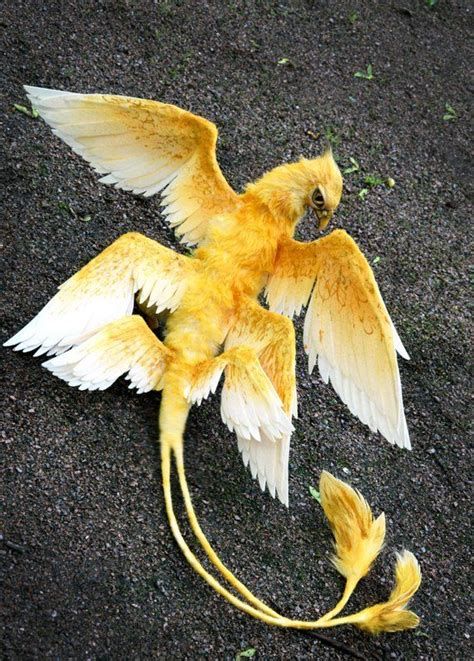 thunderbird etsy animals beautiful fantastic beasts
