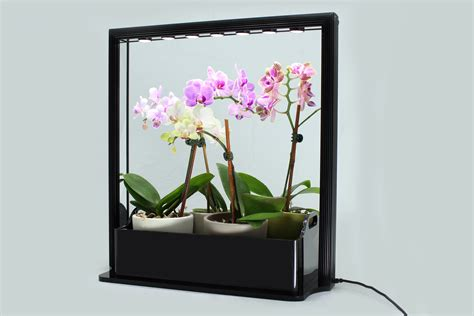 plant lights for indoor plants new led mini garden from inhomegardening com is a great