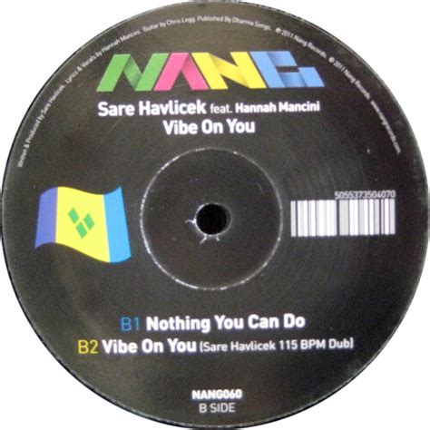 Sare Havlicek Feat Hannah Mancini  Vibe On You [empyrean