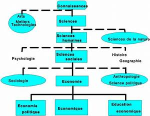 The Diagram Of The Sciences