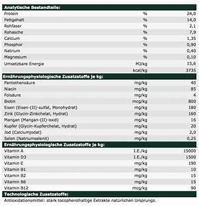 Hundefutter Auf Rechnung Bestellen : josera ente kartoffel auf rechnung kaufen schnelle lieferung schweiz ~ Themetempest.com Abrechnung