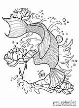 Koi Fish Pond Drawing Outline Coloring Pages Japanese Tattoo Drawings Getdrawings Line Printcolorfun Colors sketch template