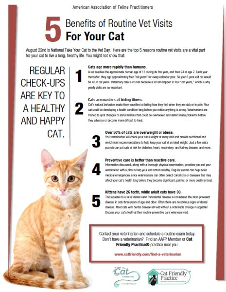 national   cat   vet day cat friendly homes