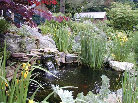Garden, Ponds & Waterfalls In Chester County